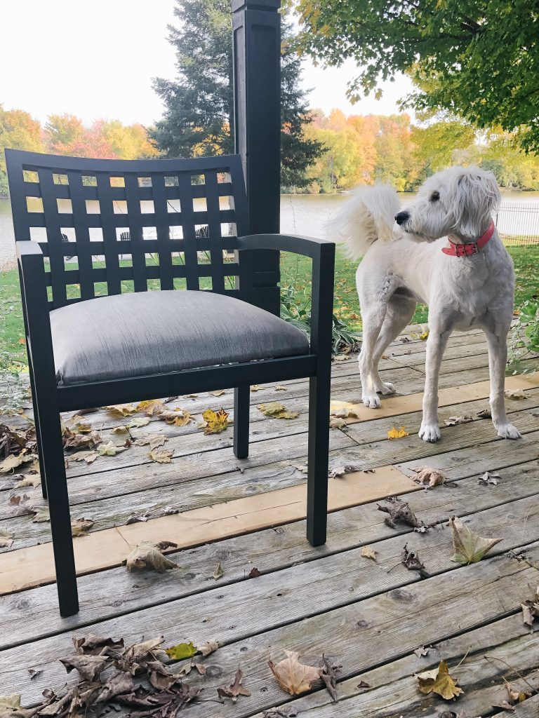Lola and chair