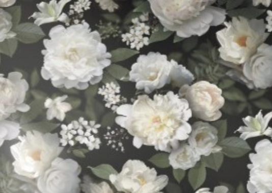 This is the Black Photographic Floral Peel and Stick Wallpaper that we used in the bedroom makeover.