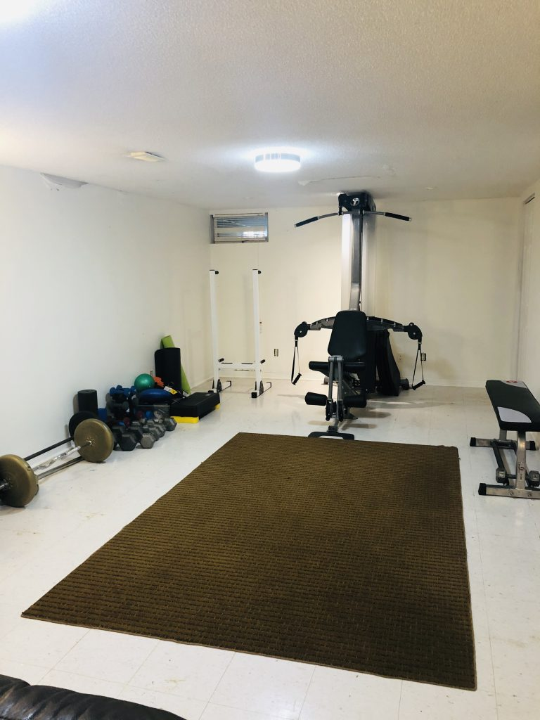 This is our unfortunate looking 1970s basement gym.  My priority is is to find storage for all the pieces of equipment.