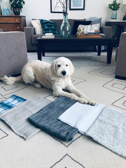 Lola is like Vanna White showing off the fabric selections for the pillow covers I am making
